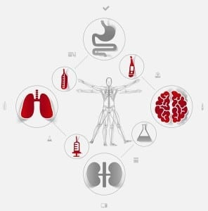 Resized_Medical_Graphic_Vitruvian