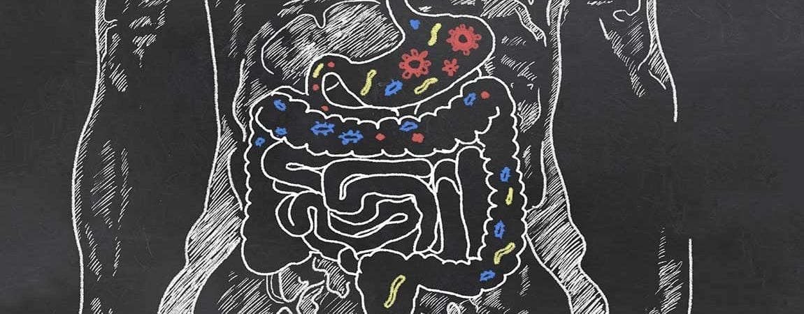 Probiotics Linked to Dental Health, Stress Reduction and More
