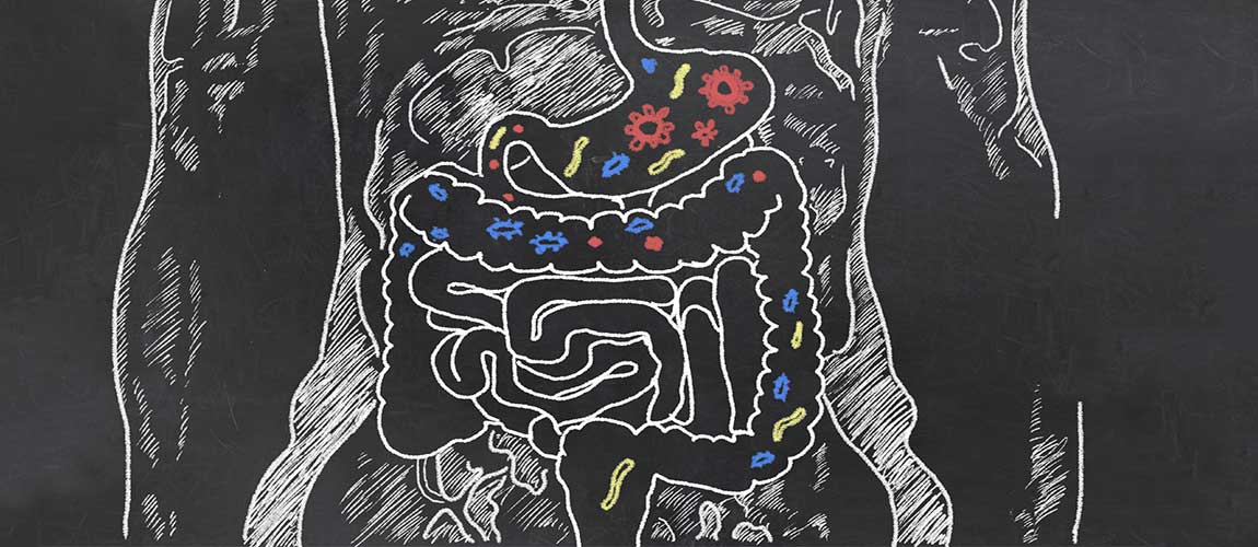 probiotics linked to dental health stress reduction and more 4