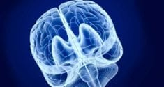 researchers uncover the intricate relationship between sleep and memory 3