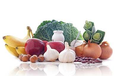 The Health Benefits of Prebiotics 1