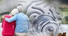 Cognitive Health Found to Be Important Determinant of Lifespan 1