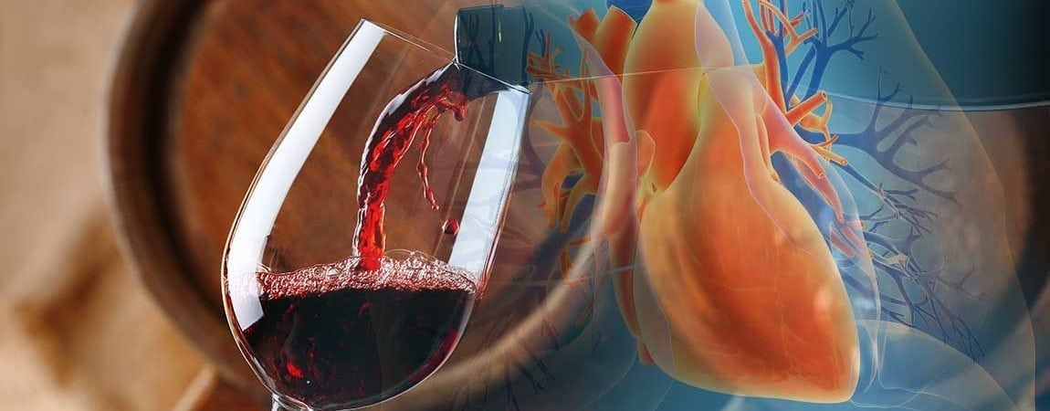 Red Wine Compound Resveratrol May Protect Lungs and Respiratory Health