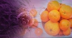 New Breakthroughs Uncover a Promising Link Between Vitamin C and Cancer 1
