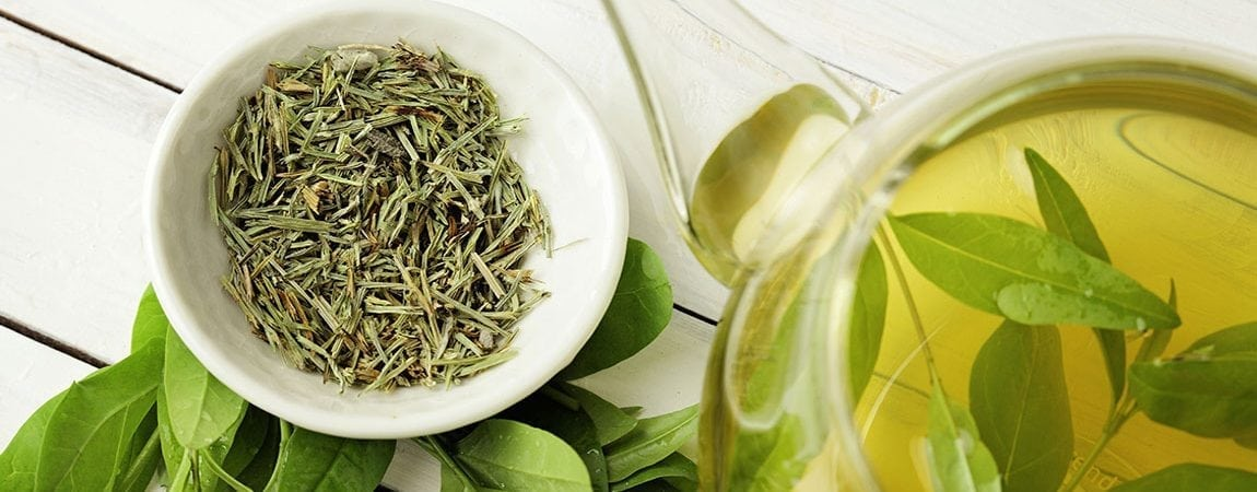EGCG from Green Tea Helps Combat Negative Effects of a Western Diet