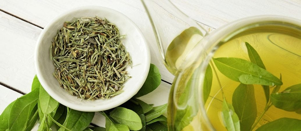 EGCG from Green Tea May Help Combat Negative Effects of a Western Diet 2