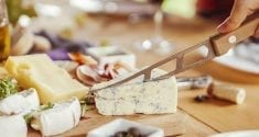 eating cheese protects heart health says new study 2