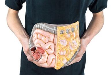 New Evidence Shows That Antibiotics Shorten Lifespan