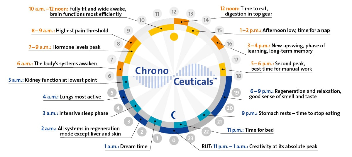 Chronobiological Clock