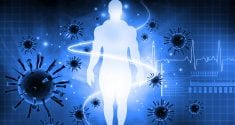 discovered how the immune system promotes friendly gut bacteria