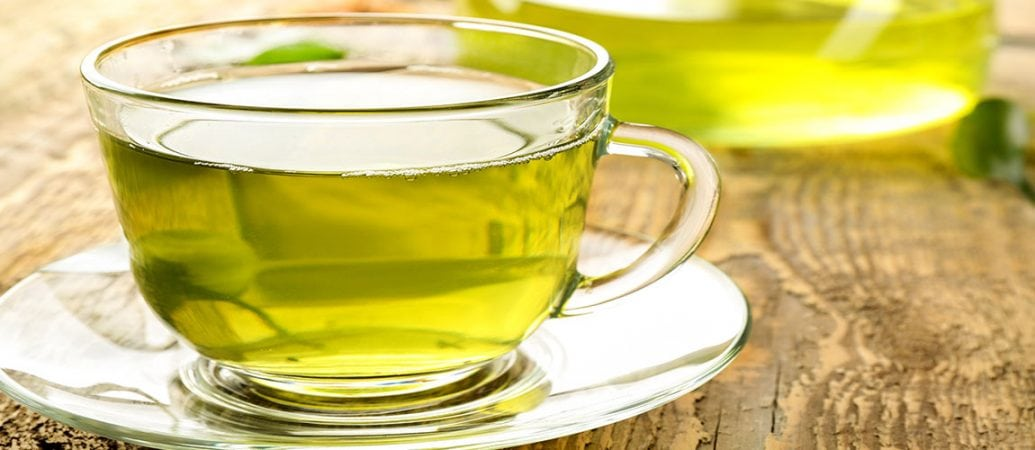 New Research Suggests Green Tea Compound EGCG Fights Atherosclerosis 1