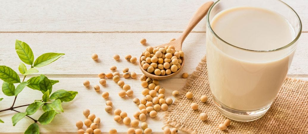 New Study Supports Connection Between Dietary Soy and Bone Strength 1