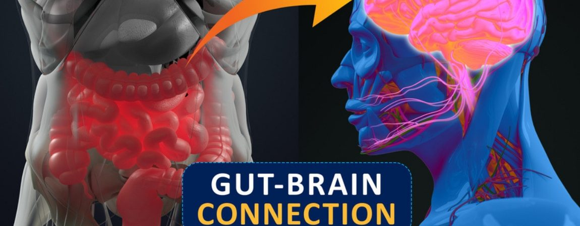 The Unlikely Connection Between Gut Bacteria and Mental Disorders
