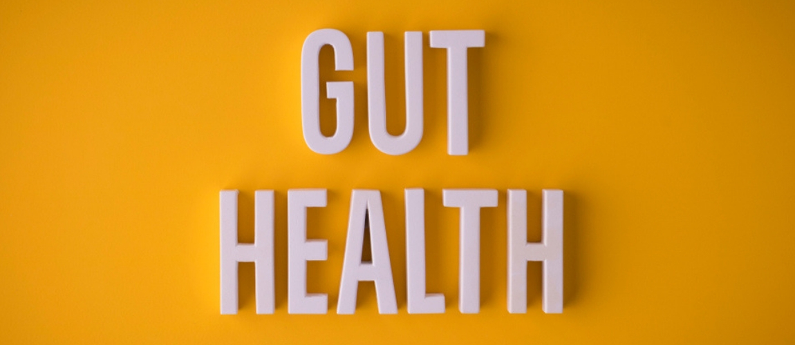 Scientists Probe New Link Between Gut Health and Chronic Disease