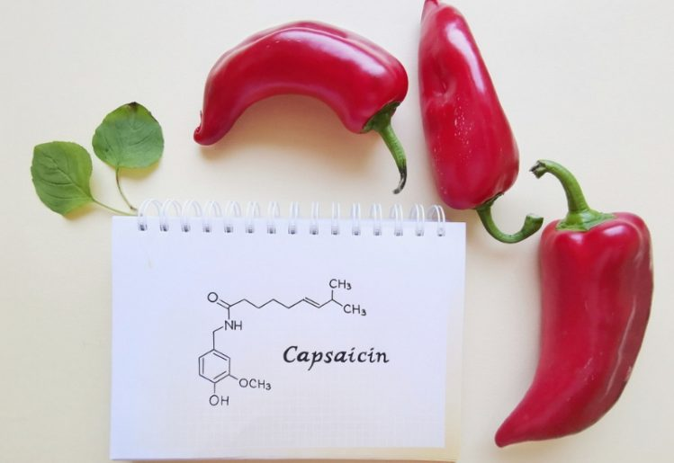 New Insights Reveal How Chili Pepper Compound Capsaicin Relieves Pain 2