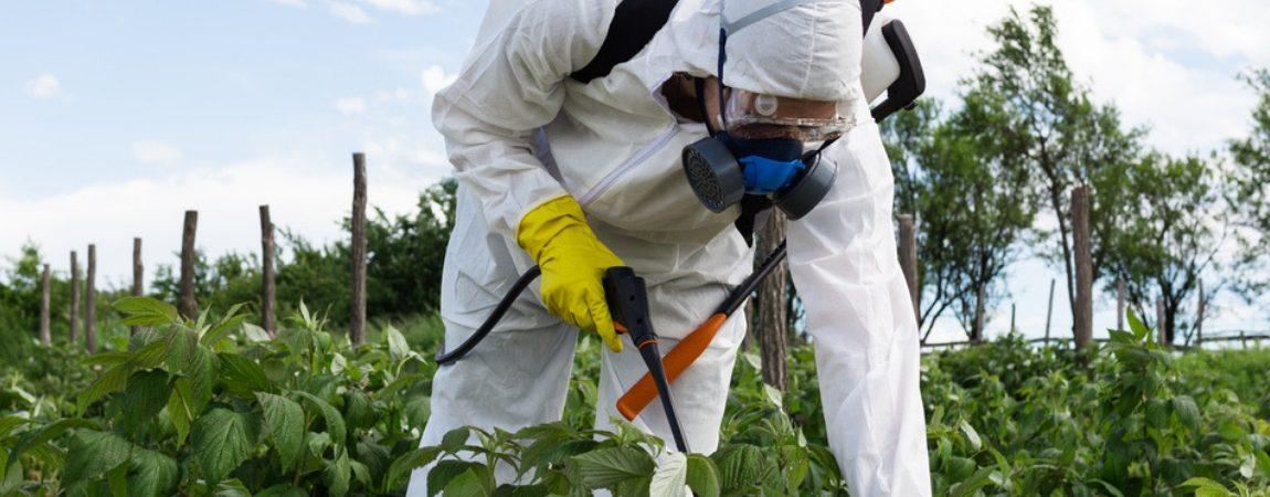 Popular Weed-Killer Ingredient Glyphosate Disrupts Gut Bacteria