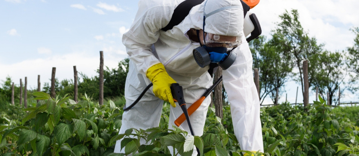 Popular Weed-Killer Ingredient Glyphosate Disrupts Gut Bacteria