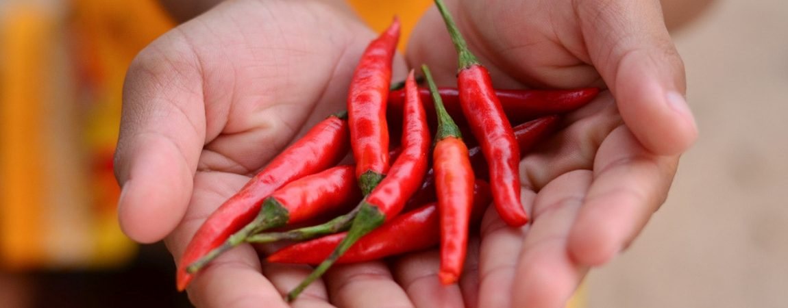 Chili Pepper Compound Capsaicin Reduces Mortality Risk, Says New Study