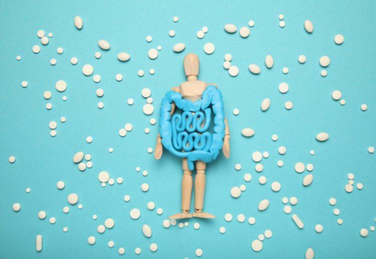 How Probiotics Boost Immune System Health 1