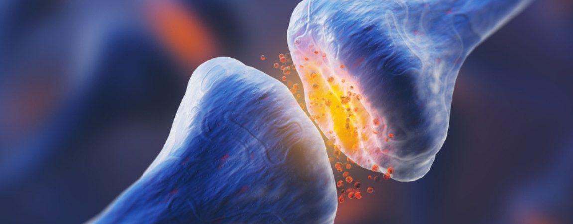Serotonin Deficiency: Symptoms and Treatment