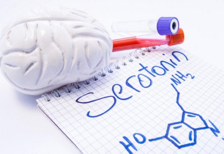 """Happy Hormone"" Serotonin Regulates Impulse Control and Patience"