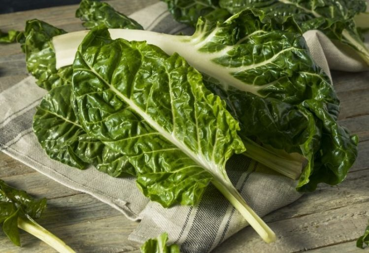 Eat These Foods for Healthy Bones into the Golden Years 1