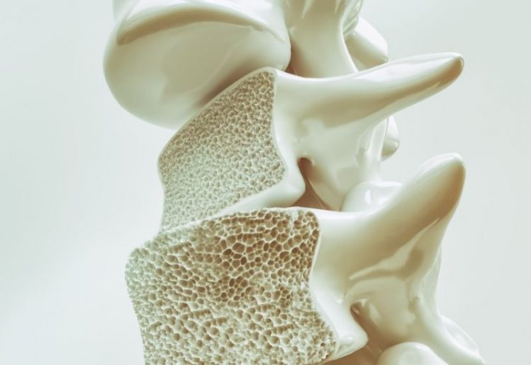 Eat These Foods for Healthy Bones into the Golden Years