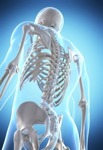 The Complete Guide to Vitamin D for Bone Health and More