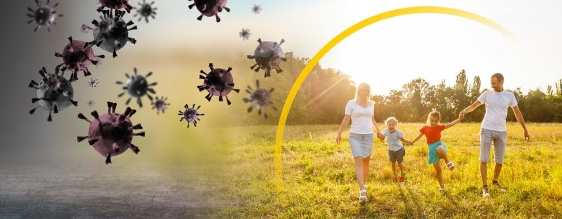 Natural Ingredients to Boost Immune System Health